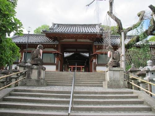 東大寺 (226)