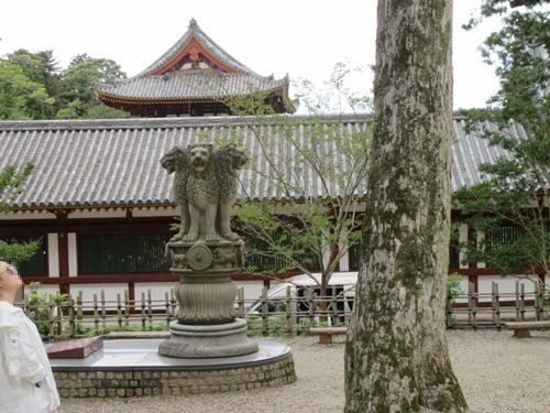 東大寺 (73)