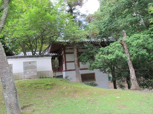 東大寺 (94)