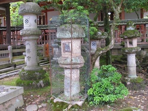 東大寺 (109)