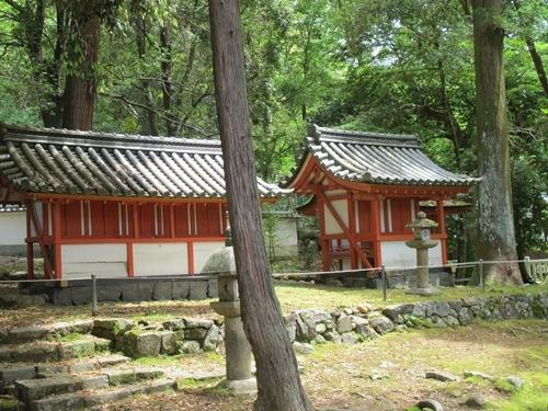 東大寺 (116)