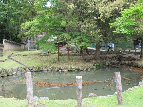 東大寺 (128)
