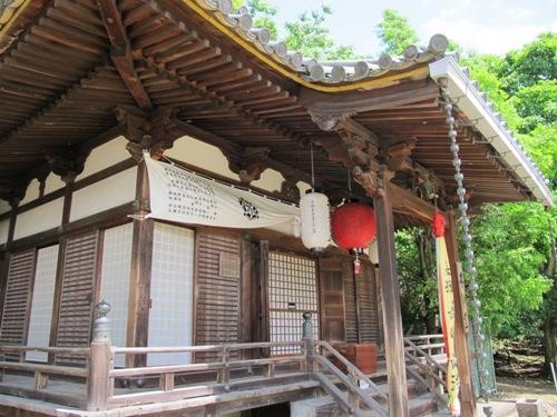 東大寺 (135)