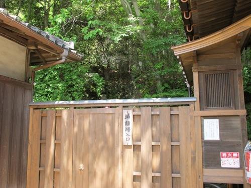 東大寺 (136)