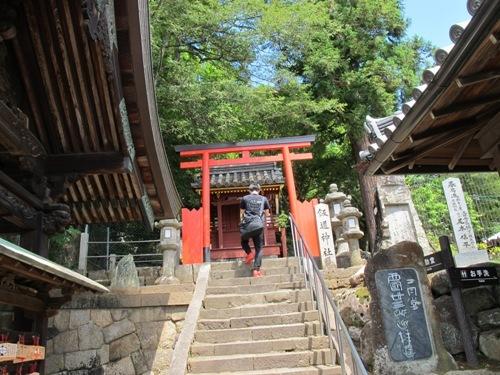 東大寺 (143)