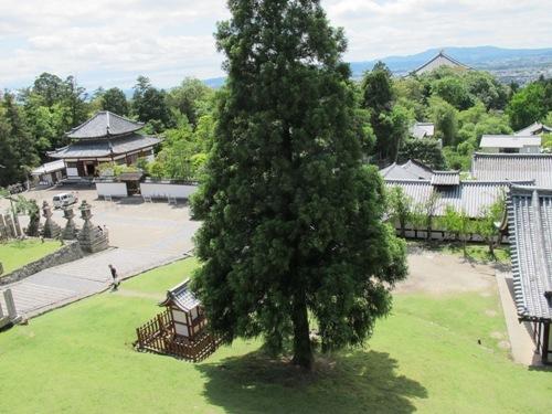 東大寺 (160)