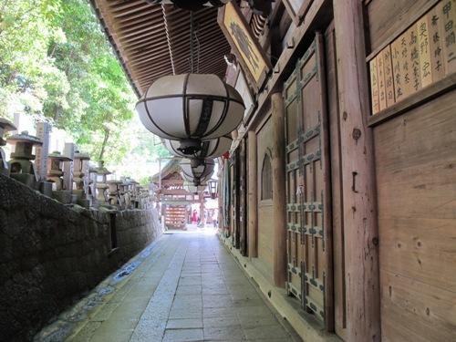 東大寺 (165)