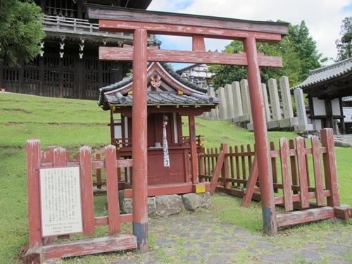 東大寺 (172)