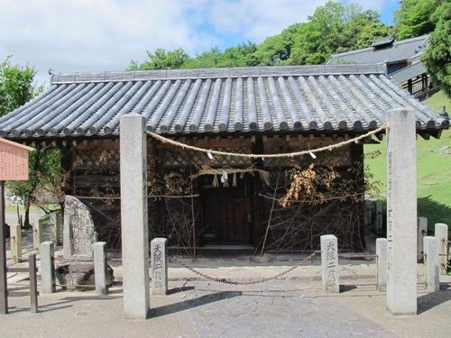 東大寺 (178)