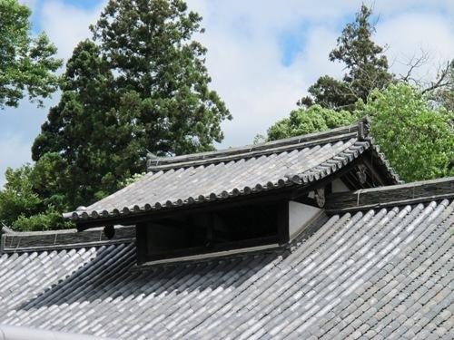 東大寺 (185)