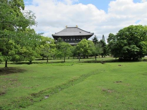 東大寺 (193)
