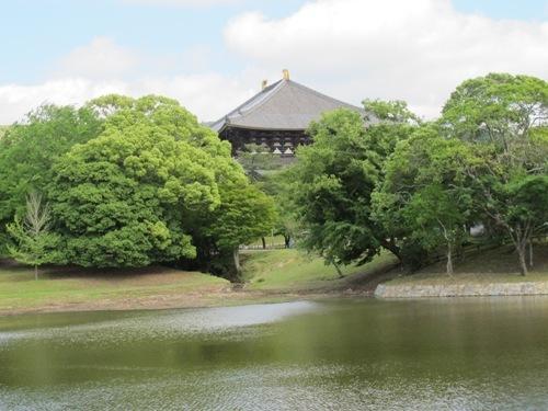 東大寺 (196)