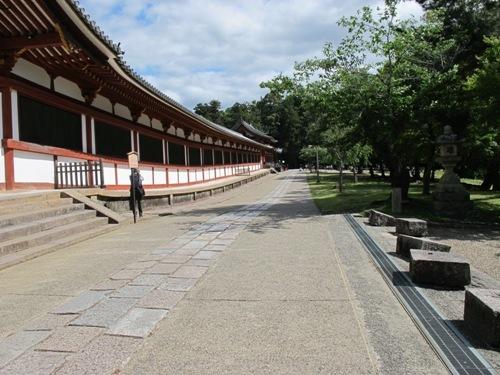 東大寺 (206)