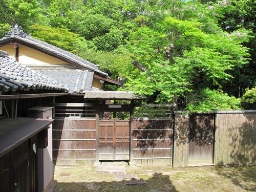 東大寺 (212)