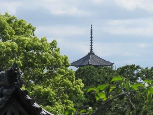 東大寺 (214)
