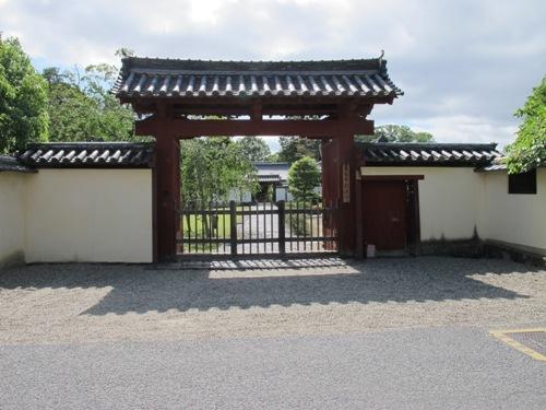 東大寺 (215)