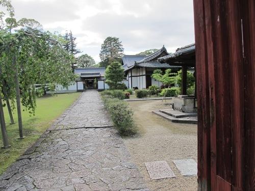 東大寺 (216)