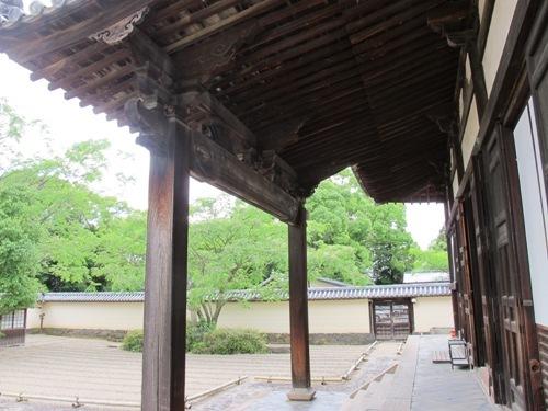 東大寺 (220)