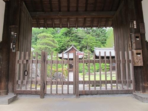 東大寺 (222)