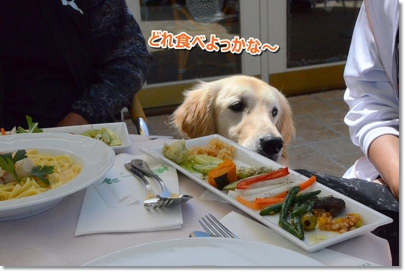 DSC_2483れあも食べた~い