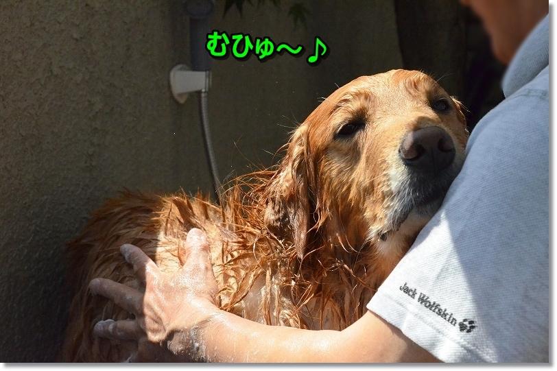 DSC_2754むひゅひゅ