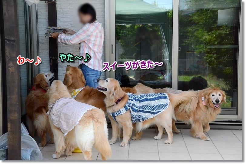 DSC_3096デザートよ~