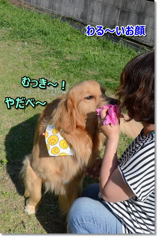 DSC_3309むっき~