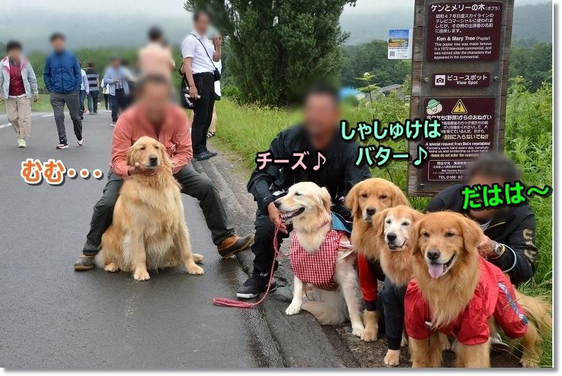 DSC_4779ばたーMAIRO KUNNMO