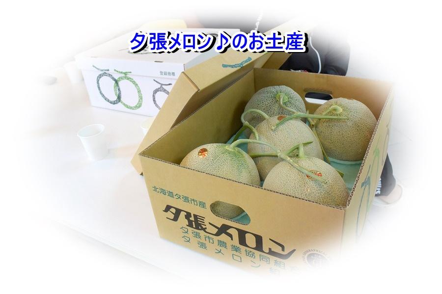 DSC_3071_20180706001425ea0.jpg