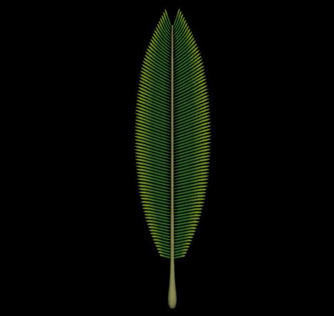 3D椰子の木枝葉レンダリング1