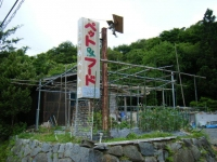 2018-06-10しろぷーうさぎ03