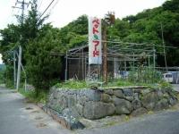 2018-06-19しろぷーうさぎ03