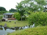 2018-06-16登米市南方花菖蒲の郷-しろぷーうさぎ040