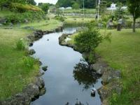2018-06-16登米市南方花菖蒲の郷-しろぷーうさぎ045