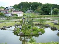 2018-06-16登米市南方花菖蒲の郷-しろぷーうさぎ043