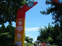 2018-06-30一迫ユリ園ーしろぷーうさぎー003