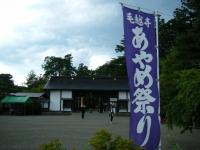 2018-06-30平泉-毛越寺アヤメ祭り-しろぷーうさぎ002