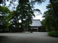 2018-06-30平泉-毛越寺アヤメ祭り-しろぷーうさぎ009