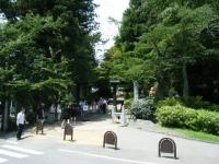 2018-07-14重箱石しろぷーうさぎ・中尊寺ハス祭り003