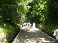 2018-07-14重箱石しろぷーうさぎ・中尊寺ハス祭り008