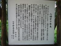 2018-07-14重箱石しろぷーうさぎ・中尊寺ハス祭り015