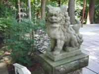 2018-07-14重箱石しろぷーうさぎ・中尊寺ハス祭り029