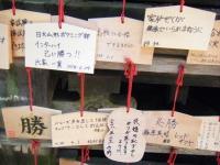 2018-07-14重箱石しろぷーうさぎ・中尊寺ハス祭り033