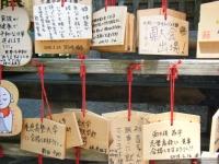 2018-07-14重箱石しろぷーうさぎ・中尊寺ハス祭り032