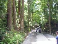 2018-07-14重箱石しろぷーうさぎ・中尊寺ハス祭り050