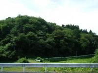 2018-08-02しろぷーうさぎ-重箱石04