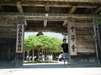 2018-07-14重箱石しろぷーうさぎ・中尊寺ハス祭り072
