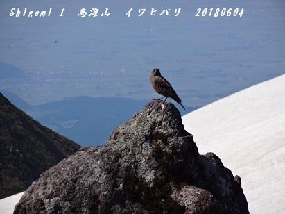 鳥海山 -5-