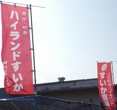 波田すいかのぼり -2-