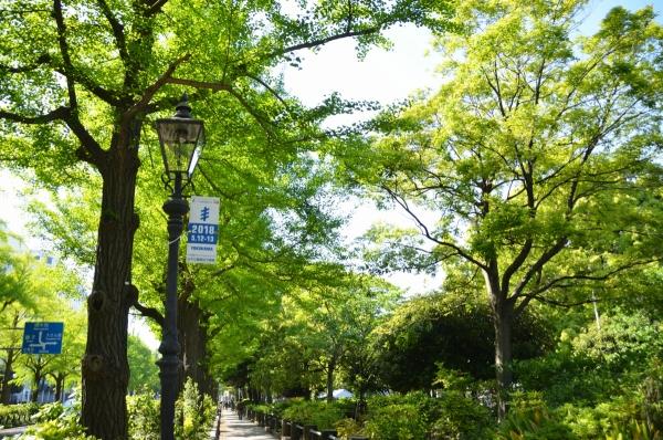 横浜散歩2